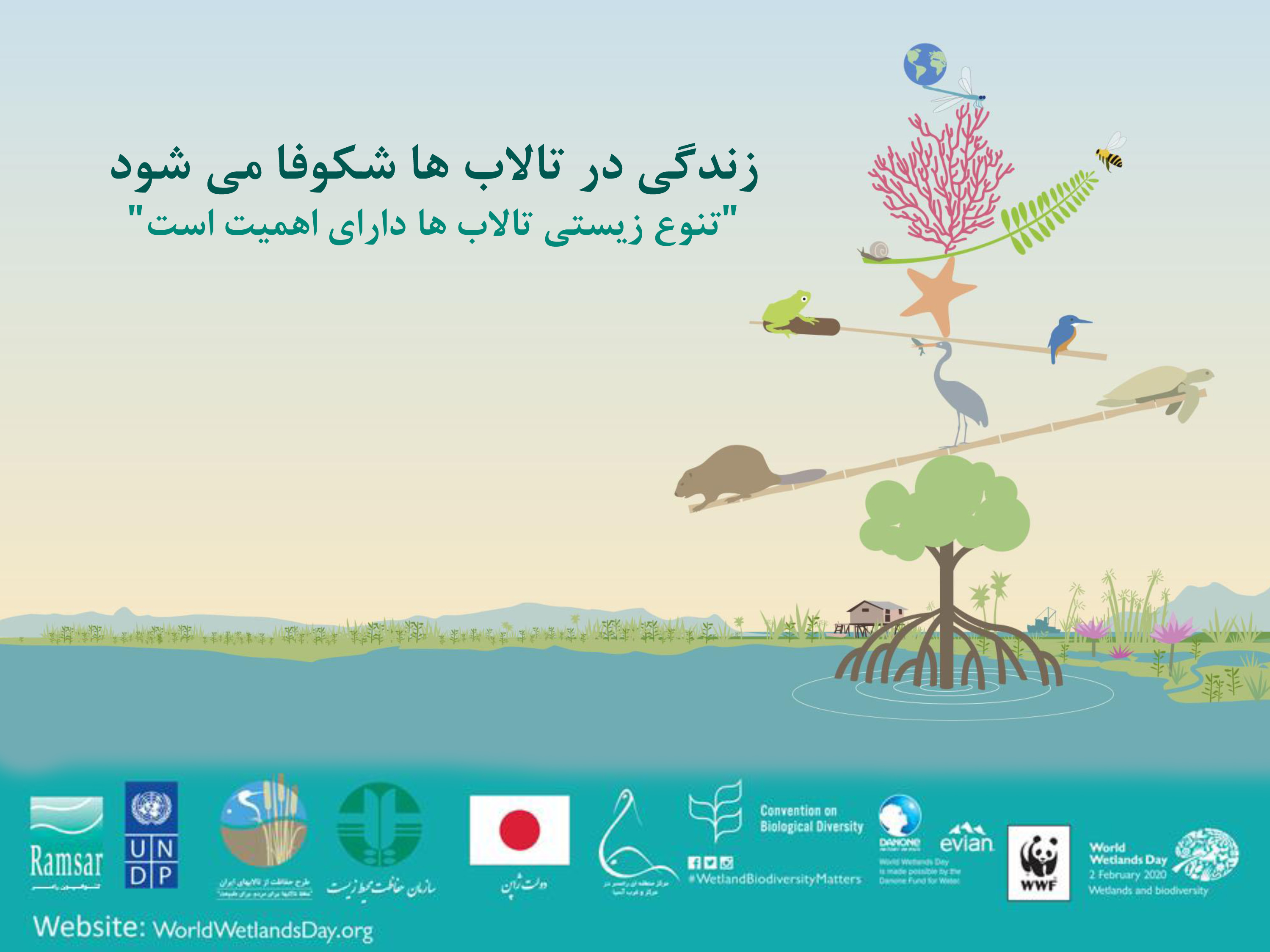 The customs of the international wetlands' day will be observed by the Department of Environment of Kurdistan province and Zarivar wetland.